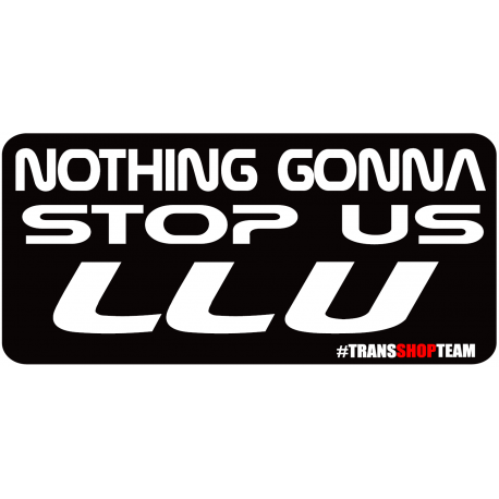 NOTHING GONNA STOP US LLU 30 CM NAKLEJKA WLEPA